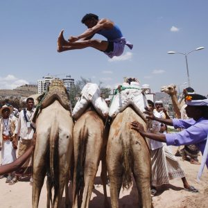 A Bedouin man jumps over camels during the Sanaa Summer Festival in Sanaa August 20, 2013. The two-week festival aims to stimulate domestic tourism and reassure local and international tourists about Yemen's stability. REUTERS/Khaled Abdullah (YEMEN - Tags: SOCIETY TRAVEL ANIMALS TPX IMAGES OF THE DAY)