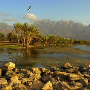 socotra-island-yemen-amazing-view